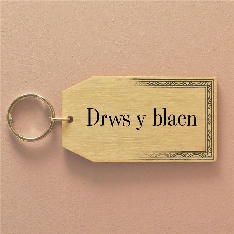 Copy of Drws y blaen - The Back Door Keyring